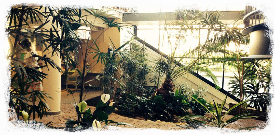 Notre hall d'entrée verdoyant