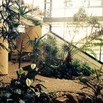 Notre hall verdoyant